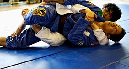 martial arts mma stunt mats